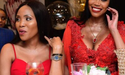 Actress Sonia Mbele weighs in on Norma and Malusi Gigaba's Marital issue
